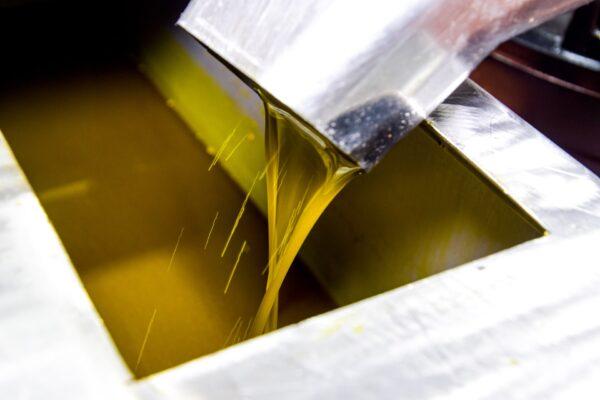 oil2-min